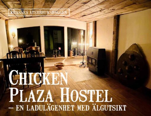 Chicken plaza hostel