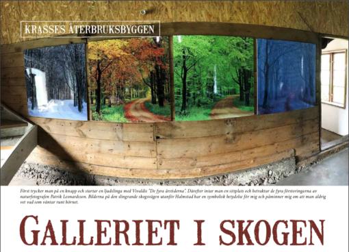 Galleriet i skogen