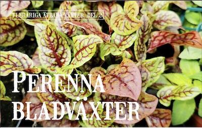 Perenna bladväxter